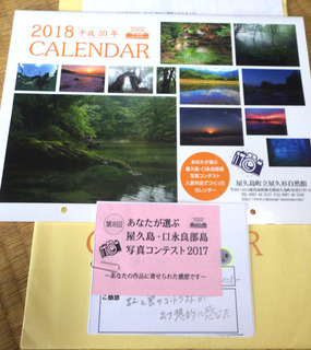 1120屋久杉自然館カレンダー.jpg