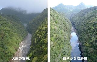 20140313安房川00.jpg