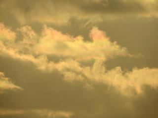 0101彩雲0385.jpg