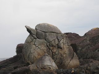 0107高平亀岩0952.jpg