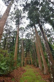 0112大山神社_0935.jpg