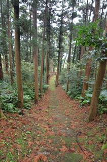 0112大山神社_0936.jpg