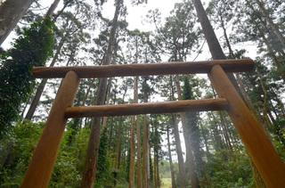0112大山神社_0939.jpg