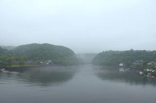 0424霧の安房川_1181.jpg