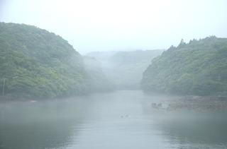 0424霧の安房川_1182.jpg