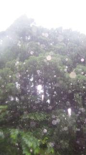 0621雨.jpg