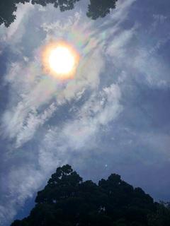 0625彩雲とトトロ_1636.jpg