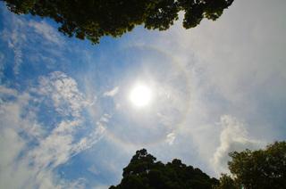 0625_1302ハロと彩雲とトトロ_0017.jpg