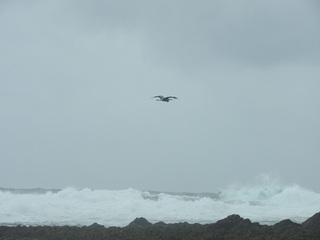 0702台風前の海.jpg