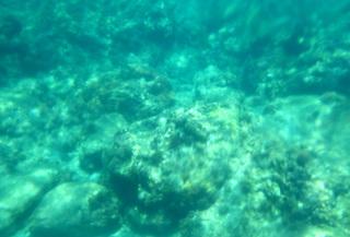 0717一湊海.jpg