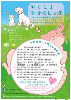 0807shimaneko_green.jpg