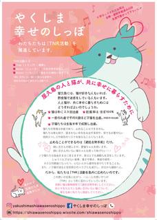 0807shimaneko_pink.jpg