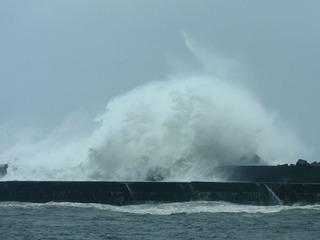 0821台風の波.jpg