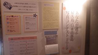 08屋久島カレンダー8016.jpg