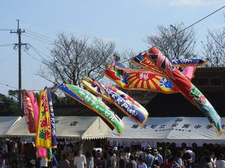 1111飛び魚祭り08.jpg