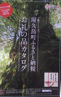 1230ふるさと納税.jpg