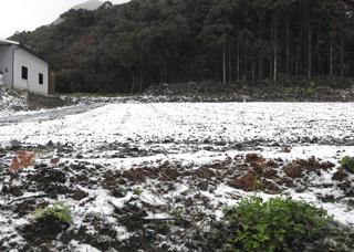 1231雪の朝0357.jpg