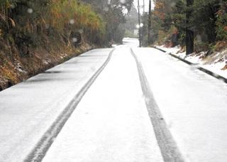 1231雪の朝0361.jpg