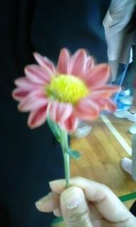 凍った菊.JPG